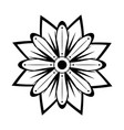 isolated monochrome flower icon vector image vector image