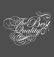 Typography of The Best Quality with accents vector image vector image