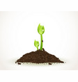 a young sprout in dirt isolated on white vector image