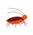 cartoon cockroach isolated on vector image vector image