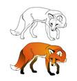 coloring fox vector image