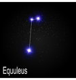 Equuleus Constellation with Beautiful Bright Stars vector image vector image