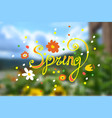 inscription spring with different flowers on a vector image vector image