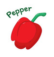 isolated red pepper icon vector image vector image