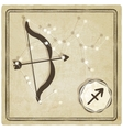 astrological sign - sagittarius vector image vector image