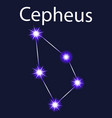 constellation cepheus with stars in the night sky vector image
