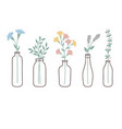 flowers in bottles vector image vector image