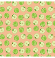 Green apple pattern on pink background vector image vector image