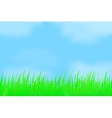 Green grass against the misty sky vector image
