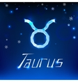 01 Taurus horoscope sign vector image vector image