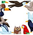 background with stylized birds image of wild vector image