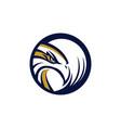 circle eagle hawk logo symbol vector image vector image