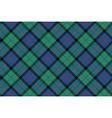 flower of scotland tartan fabric texture seamless vector image vector image