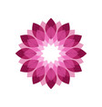 magenta flower shades symbol graphic geomteric vector image vector image