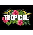 Print with tropical leaves and flowers Palms vector image vector image
