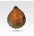 salak salacca or zalacca fruit low poly art vector image vector image