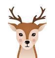 cute deer woodland forest animal vector image