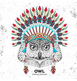 hipster bird owl with indian feather headdress vector image