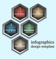 modern infographic template with hexagons vector image vector image