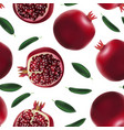 realistic detailed 3d whole pomegranate with half vector image vector image