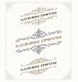 set elegant vintage ornamental emblems vector image vector image