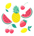 set of stylized fruits a symbol of summer vector image