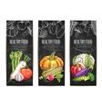 Vegetables Vegetarian sketch posters vector image vector image