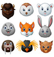 animals head cartoon collection vector image vector image