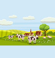 rural cute farm view cow sheep vector image vector image