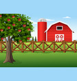 apple tree on the farm vector image