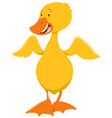 cute duckling animal character vector image vector image