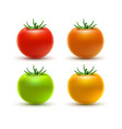 tomato colorful isolated on white tomato organic vector image vector image