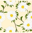 white aster flower on ivory beige background vector image vector image