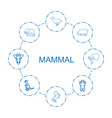 8 mammal icons vector image vector image