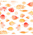 autumn leaves seamless patter vector image vector image