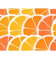 Citrus segments seamless background vector image vector image