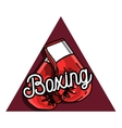 Color vintage Boxing emblem vector image
