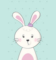 cute rabbit or bunny poster for baroom vector image vector image
