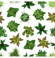 realistic detailed 3d top view green plants vector image vector image