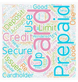 Secured And Prepaid Credit Cards text background vector image vector image