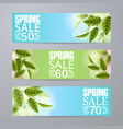 spring sale banner with grass green leafs vector image