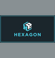 xe hexagon logo design inspiration vector image vector image