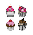 cup cake set sliced chocolate cakes delicious vector image
