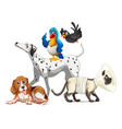 cute animal dog group isolated on white background vector image vector image