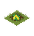 isometric cartoon fruit garden bed planted with vector image vector image