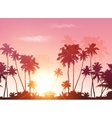 palms silhouettes at pink sunset sky vector image vector image