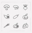 set of vitamin icons line style symbols with leek vector image