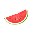 fresh juicy watermelon slice isolated vector image vector image