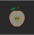 half a red apple with a leaf a cross-section vector image vector image