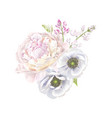 peony anemone composition